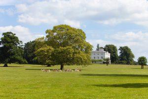 Bridwell Park Estate