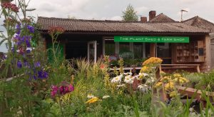 The Plant Shed and Farm Shop